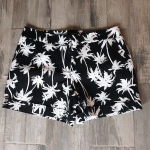 Palm tree nwt shorts